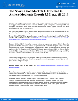 The Sports Good Markets Is Expected to Achieve Moderate Growth 3.3% p.a. till 2019